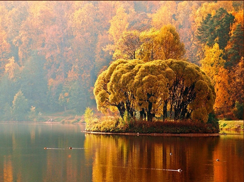 paesaggi_bellissimi_z_autunno